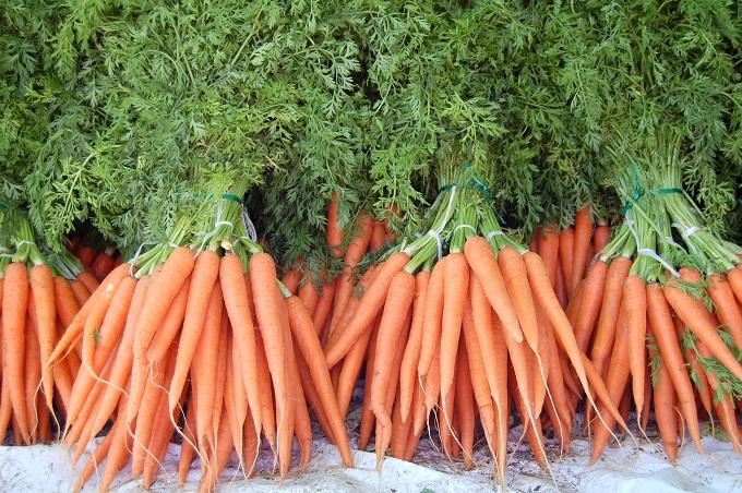 Jak� potraviny jsou zdrojem vitam�nu A?